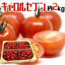 フルーツミニトマト キャロル