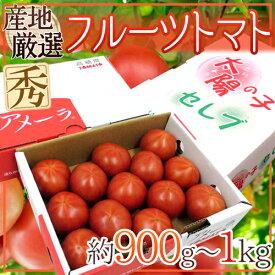 """""""フルーツトマト"""" 約900g〜1kg 3箱購入で送料無料!アメーラ・ブリックスナイン・太陽の子セレブのいずれかでお届け【予約 3月以降】"""