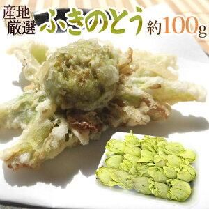 """""""ふきのとう"""" 約100g 大きさおまかせ 山菜【予約 2月以降】"""