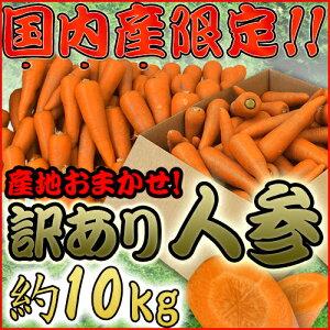 """【送料無料】国内産限定! """"にんじん"""" 訳あり 約10kg 産地おまかせ 人参"""