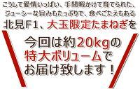 """北海道北見F1""""たまねぎ""""約20kg大玉L〜LL秀品玉葱"""