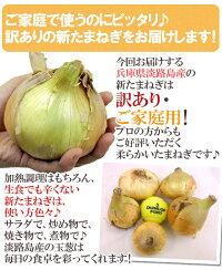 """兵庫県淡路島産""""新たまねぎ""""訳あり約10kg"""