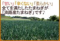 """兵庫県淡路島産""""たまねぎ""""訳あり約10kg"""