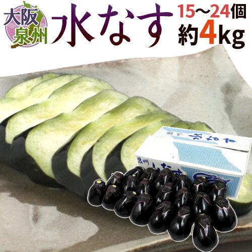 """【送料無料】大阪泉州 """"水なす"""" 15〜24個 風袋込約4kg 贈答用品質(等級A・B)【予約 3月以降】"""