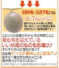"""北海道赤肉メロン""""らいでんレッドメロン""""1玉約2kg化粧箱"""