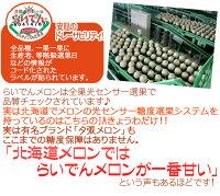 """北海道赤肉メロン""""らいでんレッドメロン""""4〜5玉約8kg化粧箱"""