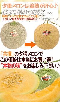 "北海道""夕張メロン""共撰・秀品2玉約3.2kg"