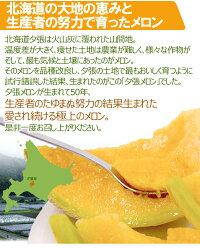 """北海道""""夕張メロン""""共撰良品2玉約3.2kg化粧箱"""