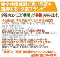 "北海道""夕張メロン""共撰・優品1玉約1.6kg"