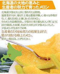 "北海道""夕張メロン""共撰・優品2玉約4kg"