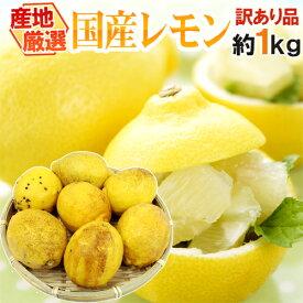 """【送料無料】""""完熟国産レモン"""" 訳あり 約1kg 大きさおまかせ 産地厳選【予約 8月以降】"""