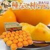 """和歌山産""""たねなし柿""""訳あり約7.5kg大きさおまかせ"""