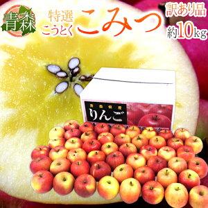 """青森県 蜜だらけりんご """"こみつ"""" 訳あり 大きさおまかせ 約10kg こうとくりんご【予約 12月以降】 送料無料"""