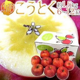 """山形産 蜜だらけりんご """"こうとく(高徳)りんご"""" 6〜12玉 約1.5kg【予約 11月以降】 送料無料"""