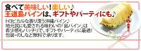 """沖縄産""""島パイン(ハワイ種)""""2〜3玉前後約1.5kg専用産地箱ハワイパイン"""