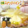 """沖縄産""""スナックパイン""""2〜3玉約1.5kg以上専用産地箱パイナップル"""