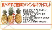 """""""甘熟台湾パイン""""2〜3玉約2.5〜3kgパイナップル/金鑚パイン/金鑚鳳梨"""