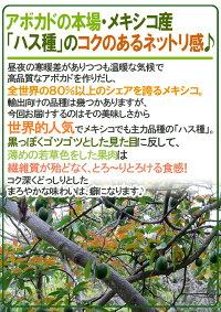 """メキシコ産""""アボカド""""12〜15玉約2.5kg"""