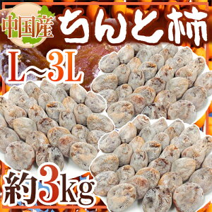 """【送料無料】""""ちんと柿"""" L〜3L 約3kg 中国産【予約 12月以降】"""