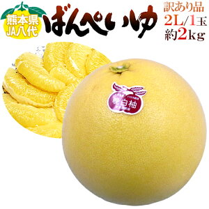 """熊本県八代特産 """"晩白柚"""" ばんぺいゆ ちょっと訳あり 大玉2Lサイズ 約2kg【予約 12月以降】"""