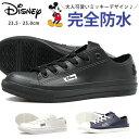 【即納】【送料無料】 スニーカー レディース 23.5-25.0cm 靴 女性 レインシューズ ローカット ディズニー Disney 730…
