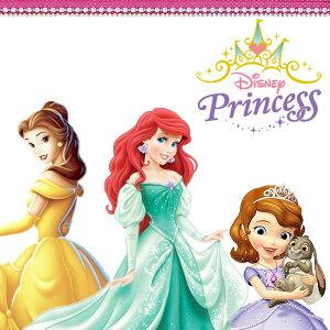 ディズニープリンセスアリエルソフィアレインブーツ子供キッズジュニア長靴DisneyPRINCESS