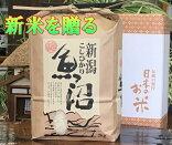 魚沼産コシヒカリ特別厳選米白米20kg(当地生産農家のお米)3650円