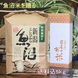 魚沼産コシヒカリ特別厳選米白米5kg(当地生産農家のお米)