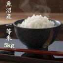 2019年 お米 5kg 新潟 魚沼産コシヒカリ 一等米 白米 農薬を抑えた減肥栽培米 当地 農家 自慢のお米 検査済み