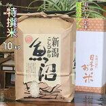 魚沼産コシヒカリ特別厳選米白米10k(当地生産農家のお米)3650円
