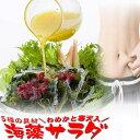 【楽天スーパーセール 半額 50%OFF】海藻サラダ 乾燥 たっぷりサイズ めかぶと寒天入 海藻スープ お吸い物にも みそ汁の具にも 腸活 水…