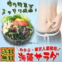 海藻サラダ 乾燥 たっぷりサイズ めかぶと寒天入り 海藻スープ お吸い物にも 味噌汁の具にも 腸活 水溶性食物繊維 海藻 無添加 送料無…