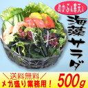 海藻サラダ(めかぶ&寒天入)メガ盛り500g 乾燥タイプ メカブと寒天の海藻芽かぶパワーでスッキリ快適 腸活 水溶性食物繊維 海藻 無添…