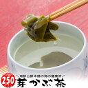 めかぶ茶 メガ盛りサイズ 送料無料 乾燥 芽かぶのお茶 みそ汁 メカブスープ お吸い物 焼酎割り 腸活 水溶性食物繊維 フコイダンの海藻 …