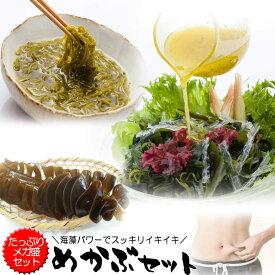 乾燥めかぶ・海藻サラダ(寒天入)メガ盛りセット みそ汁・めかぶスープ お吸い物にも 芽かぶのヌルヌルが効く 腸活 水溶性食物繊維 海藻 無添加食品 備蓄 保存食 常温食品 常温保存