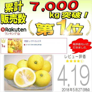 ニューサマーオレンジ伊豆産4kgあす楽対応送料無料静岡県特産旬の果物柑橘類フルーツ贈答用母の日ギフトお返し日向夏小夏かんきつ類果実果物お供え