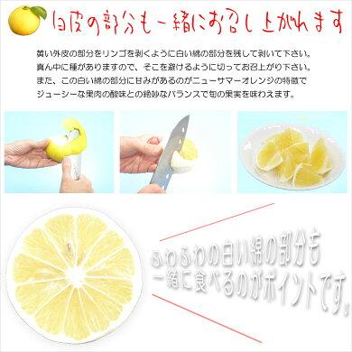 伊豆産ニューサマーオレンジ2k
