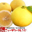 ニューサマーオレンジ(静岡県伊豆産) 2kg お試し 伊豆特産 旬の果物 フルーツ ギフト 母の日 父の日 贈答用 お返し 送料無料 送料込 通…
