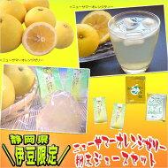 残暑見舞い【伊豆限定】ニューサマーオレンジゼリー・ジュースセット
