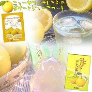 【伊豆限定】ニューサマーオレンジゼリー・ジュースセット