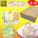 ニューサマーオレンジゼリー5個入×28袋 高級 フルーツゼリー(果物ゼリー) ギフト 送料無料 送料込 まとめ買い 法人ギフト 記念品 景…