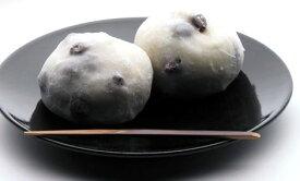 【全国送料無料】とう福本舗 塩大福20個セット(粒あん20個)【冷凍】