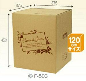 フラワーBOX F503×30枚 パック 宅配120サイズ 一部除き送料無料