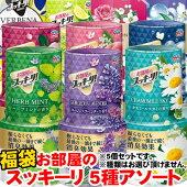 【超目玉特価】LE53アース製薬お部屋のスッキーリ!5種おまかせ福袋セット消臭芳香剤アソート