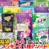 【超目玉特価】LE54アース製薬トイレのスッキーリ!5種おまかせ福袋セット消臭芳香剤アソート