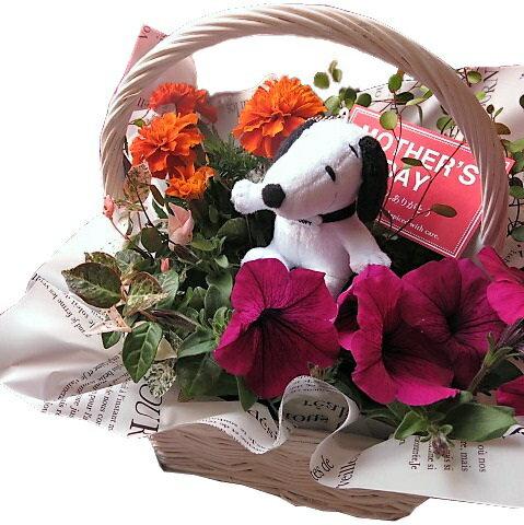 スヌーピー 鉢植え フラワーギフト  お花はデザイナーにおまかせ♪ スヌーピーストラップ入り ◆大切なあの人を笑顔にしちゃう魔法のフラワーギフト♪