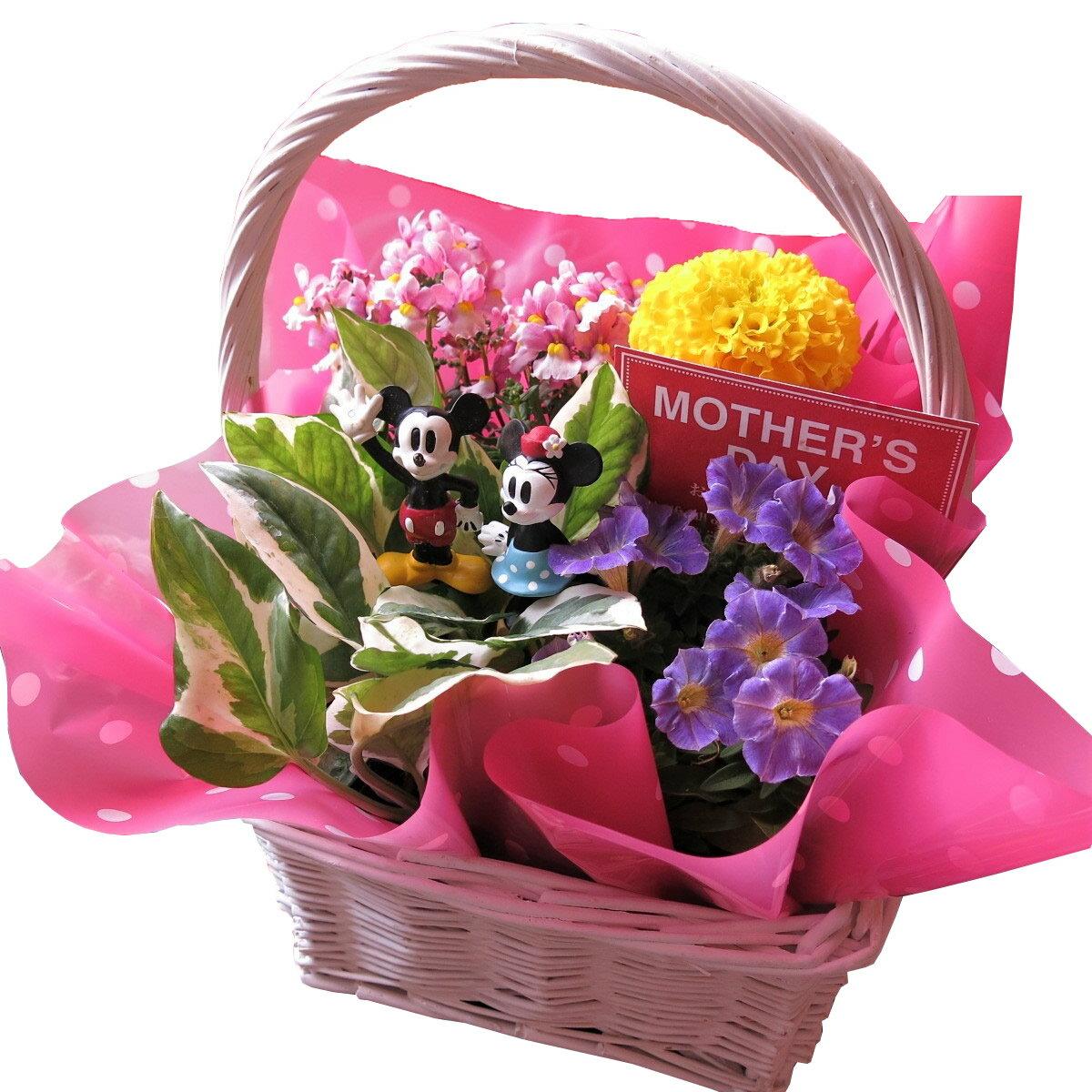 母の日 鉢植え ギフト ディズニー フラワーギフト 季節のお花お任せギフト♪ ミッキーマウス ミニー入り 母の日 花鉢 プレゼント