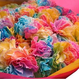 母の日 プレゼント レインボーカーネーション 100本花束 ◆母の日ギフト限定品