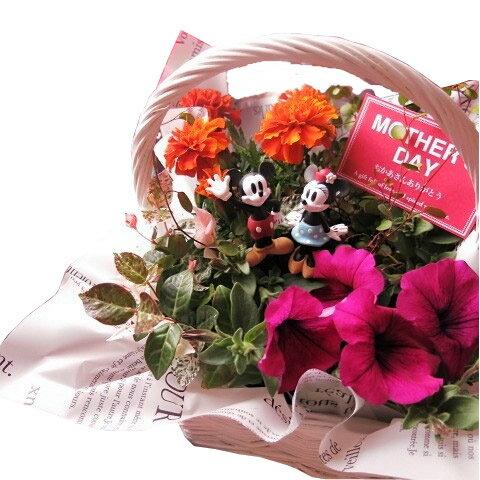 母の日 ディズニー フラワーギフト 季節のお花お任せギフト♪ ミッキーマウス ミニー入り 花鉢 プレゼント 鉢植え disny
