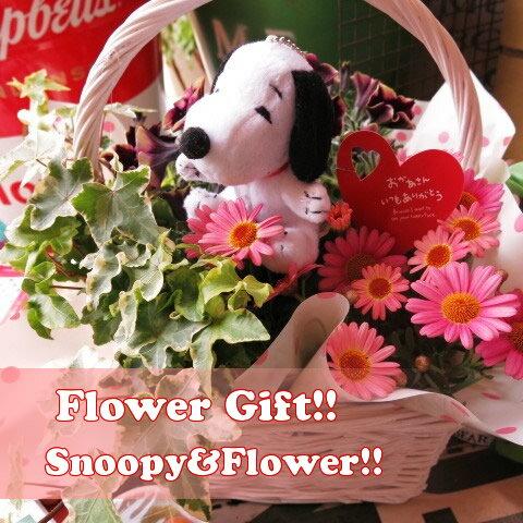 母の日 スヌーピー お届け 鉢植えギフト フラワーギフト 季節のお花お任せギフト♪ スヌーピー入り 母の日 花鉢 プレゼント
